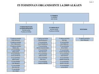 IT-TOIMINNAN ORGANISOINTI 1.4.2009 ALKAEN