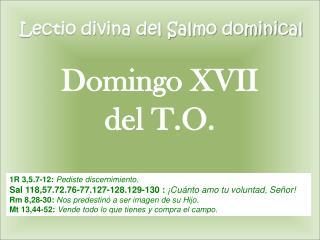 Lectio divina del Salmo dominical