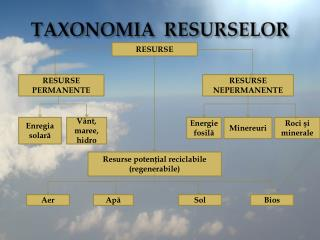 TAXONOMIA  RESURSELOR