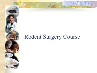 Rodent Surgery Course