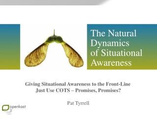 The Natural Dynamics  of Situational Awareness