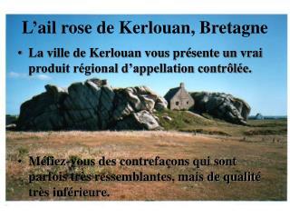 L'ail rose de Kerlouan, Bretagne