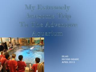 My Extremely  Awesome Trip  To The Adventure Aquarium