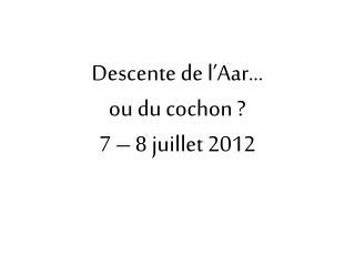 Descente de l'Aar...  ou du cochon ? 7 – 8 juillet 2012