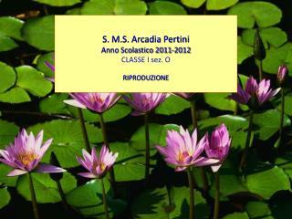 S. M.S. Arcadia Pertini Anno Scolastico 2011-2012 CLASSE I sez. O  RIPRODUZIONE