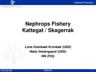 Nephrops Fishery Kattegat / Skagerrak