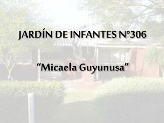 "JARDÍN DE INFANTES N°306  ""Micaela Guyunusa"""