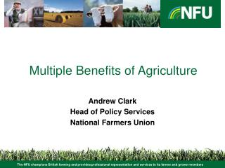 Multiple Benefits of Agriculture