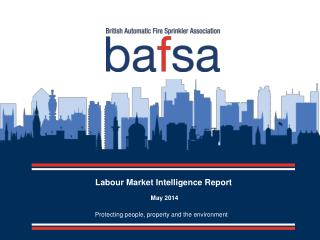 Labour Market Intelligence Report