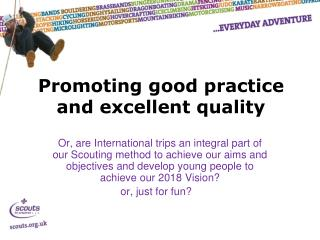 Promoting good practice and excellent quality