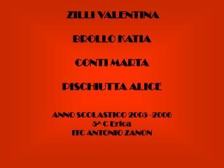 ZILLI VALENTINA  BROLLO KATIA  CONTI MARTA   PISCHIUTTA ALICE   ANNO SCOLASTICO 2005 -2006 5 C Erica ITC ANTONIO ZANON