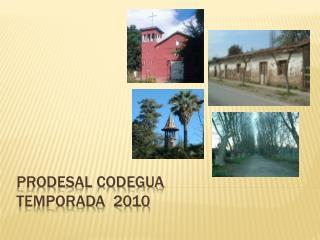 PRODESAL CODEGUA TEMPORADA  2010