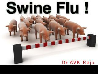 Swine Flu !