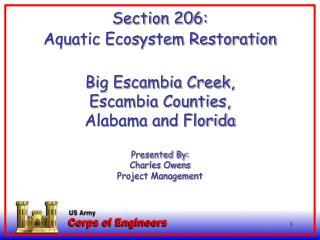 Aquatic Ecosystem Restoration Section 206 WRDA 1996, as amended