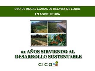 USO DE AGUAS CLARAS DE RELAVES DE COBRE EN AGRICULTURA