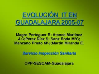 EVOLUCI�N IT EN GUADALAJARA 2005-07