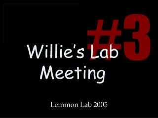 Willie's Lab Meeting