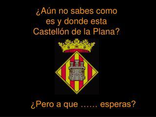 ¿Aún no sabes como es y donde esta Castellón de la Plana?
