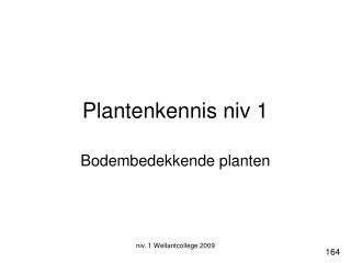 Plantenkennis niv 1