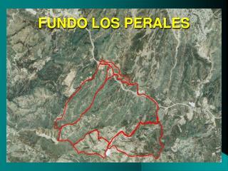 FUNDO LOS PERALES