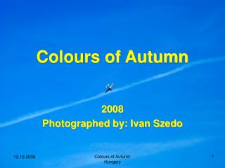 Colours of Autumn