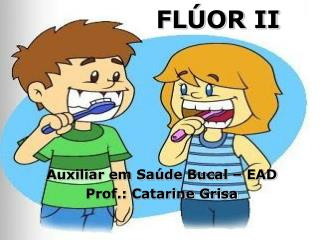 FL�OR II