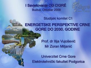 ENERGETSKE PERSPEKTIVE CRNE GORE DO 2030. GODINE