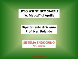 """LICEO SCIENTIFICO STATALE """"A. Meucci"""" di Aprilia"""