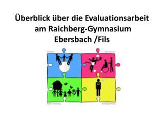 Überblick über die Evaluationsarbeit   am  Raichberg -Gymnasium Ebersbach /Fils 2002 – 2013