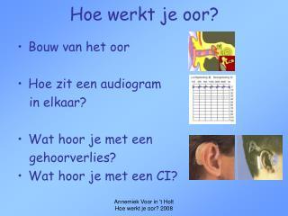 Hoe werkt je oor?
