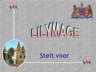 LILYMAGE