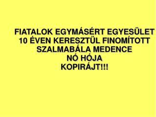 FIATALOK EGYMÁSÉRT EGYESÜLET  10 ÉVEN KERESZTÜL FINOMÍTOTT SZALMABÁLA MEDENCE  NÓ HÓJA KOPIRÁJT!!!