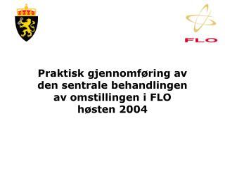 Praktisk gjennomføring av den sentrale behandlingen av omstillingen i FLO høsten 2004