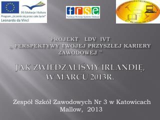 Zespół Szkół Zawodowych Nr 3 w Katowicach  Mallow ,  2013