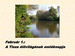 Febru�r 1.:  A Tisza �l?vil�g�nak eml�knapja