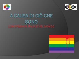 A causa di ciò che sono L'omofobia in  italia  e nel mondo