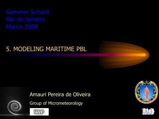 Summer School Rio de Janeiro March 2009 5.  MODELING MARITIME PBL