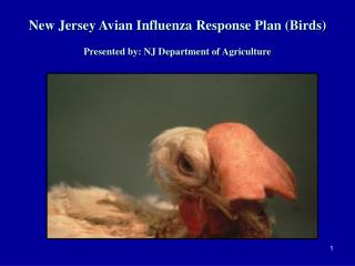 New Jersey Avian Influenza Response Plan (Birds) Presented by: NJ Department of Agriculture
