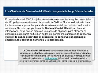 Los Objetivos de Desarrollo del Milenio: la agenda de las próximas décadas
