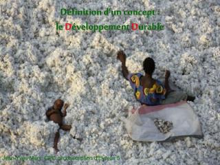 Définition d'un concept : le  D éveloppement  D urable