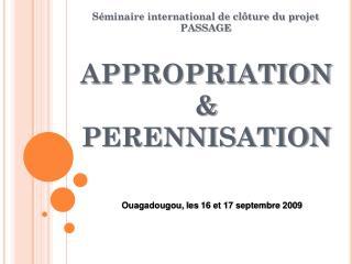 APPROPRIATION  & PERENNISATION