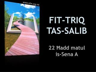 FIT-TRIQ TAS-SALIB 22 Ħadd matul is-Sena A