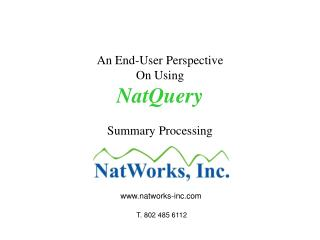 An End-User Perspective On Using NatQuery Summary Processing