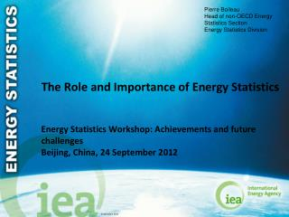 The Role and Importance of Energy Statistics