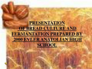 PRESENTATION  OF BREAD CULTURE AND FERMANTATION PREPARED BY  2000 EVLER ANATOLIAN HIGH SCHOOL