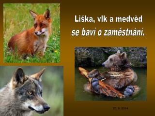 Liška, vlk a medvěd
