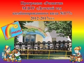 Программа «Развитие МДОУ «Детский сад  комбинированного вида №177»  2012-2017гг»
