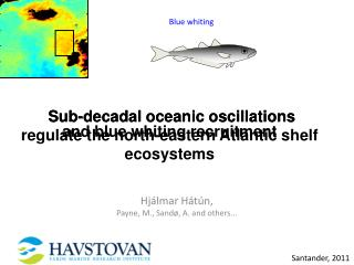 Sub-decadal oceanic oscillations regulate the north-eastern Atlantic shelf ecosystems