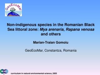 Non-indigenous species in the Romanian Black Sea littoral zone:  Mya arenaria ,  Rapana venosa