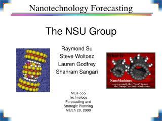 Nanotechnology Forecasting